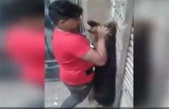 """""""محكمة الجيزة"""" تعاقب طفلًا بتهمة تعذيب كلب صديقه"""