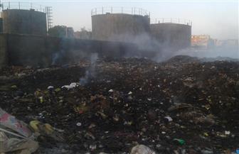 """استجابة لـ""""بوابة الأهرام"""".. محافظ أسوان يوجه رئيس """"كوم أمبو"""" بالقضاء على القمامة"""