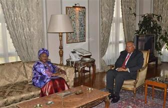 وزير الخارجية يبحث مع نظيرته الغينية تطوير العلاقات الاقتصادية والتجارية بين البلدين