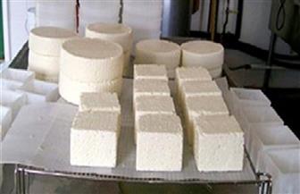 ضبط مصنع أجبان بالإسكندرية يستخدم مواد مسرطنة في التصنيع