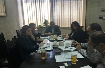 مجلس الأعمال المصري الروماني يُعلن الفرص الاستثمارية بين القاهرة وبوخارست