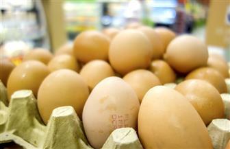 العثور على بيض ملوث بمبيد الفبرونيل في كوريا الجنوبية