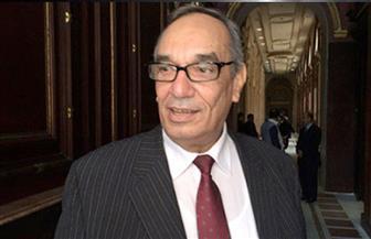 برلمانى: قانون منح الجنسية المصرية يزيد من فرص الاستثمار