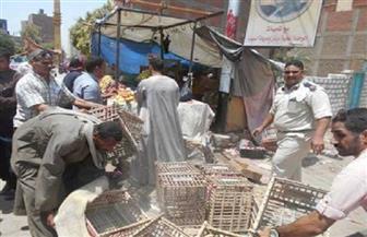 تحرير 130 محضر إشغالات بمركز البلينا في سوهاج