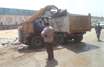رفع 1600 طن مخلفات من طريق الإخلاص بالجيزة   صور