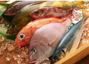 ارتفاع أسعار الأسماك بسبب زيادة الطلب على المعروض