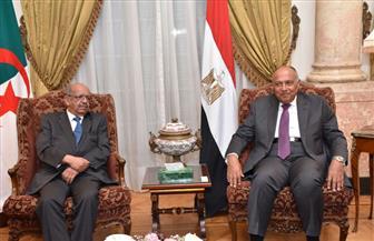 وزير الخارجية الجزائري: لا نحمل أية مبادرة لحل الأزمة مع قطر.. ولا نتدخل في شئون الآخرين
