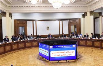 ناقش مشروعات سيناء.. وإنشاء هيئتي المثلث الذهبي وتنمية الصعيد.. ننشر تفاصيل اجتماع الحكومة   صور