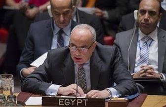 ننشر نص بيان مصر أمام مجلس الأمن لاعتماد قرار منع حصول الإرهابيين على السلاح