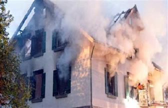 كلب يضرم نارًا في منزل ألماني