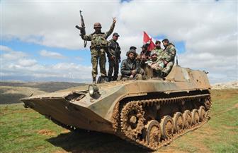 """فرنسا تعلن دعمها للجيش اللبناني في معركته ضد """"داعش"""" شرق البلاد"""