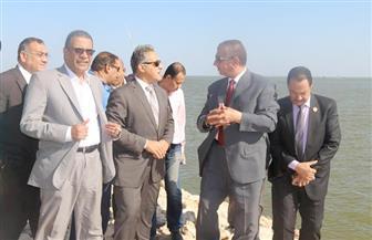 لجنة الإدارة المحلية ومحافظ كفر الشيخ يتفقدون محطة كهرباء البرلس |صور