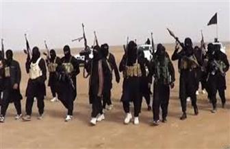 يهوديان إسرائيليان يعتنقان الإسلام وينضمان لداعش
