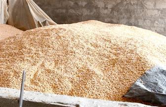 ضبط مصنع يستخدم بودرة البلاط فى تصنيع الأعلاف بالبحيرة