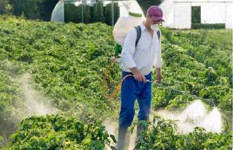 أحمـد البري يكتب: وقفة مع مبيدات الآفات الزراعية