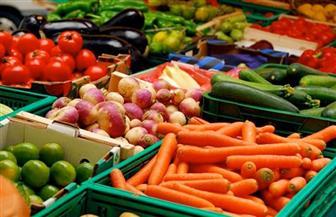 نورالدين: تحقيق الأمن الغذائي يتطلب دراسة الأسواق والبعد عن المشروعات السطحية