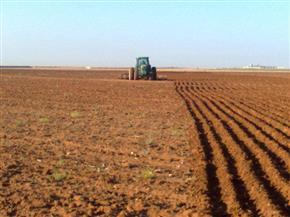 أحمـد البري يكتب:  طوارئ في العيد لصرف الأسمدة للمزارعين