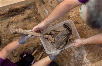 أثريون إسبان ينتشلون جثث ضحايا الحرب الأهلية من مقابر جماعية