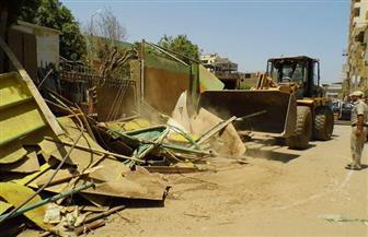 حملة نظافة وإزالة تعديات في ثاني أيام العيد بدمياط