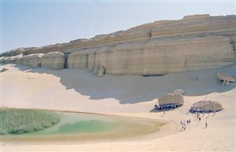 """شباب بتحب مصر: """"حرب الألوان"""" كارثة بيئية تهدد المنظر الجمالي والحياة البرية بمحمية وادي الريان"""