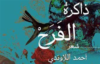 """أحمد اللاوندي: تجليات القرية المصرية واضحة في ديواني """"ذاكرة الفرح"""""""