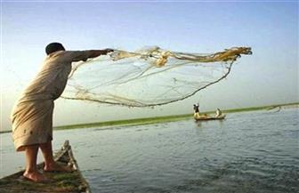 منذ 98 عامًا.. تجارة الصيد غير مربحة في البحر الأحمر ومشاهدة أسماك لها دروع لأول مرة وتسجيلها   صور