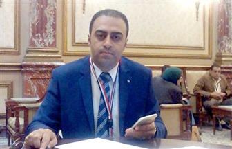 برلماني: فرض الطوارئ يستهدف تأكيد هيبة الدولة ودحر الإرهابيين