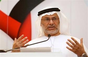 """وزير إماراتي: قطر ترى تقويضها لأمن مصر والبحرين """"حقا طبيعيا"""""""