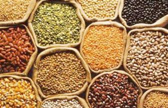 انخفاض بعض أسعار الحبوب في السوق المحلية