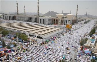 قرقاش: نجاح السعودية في تنظيم الحج نجاح لكل مسلم وعربي