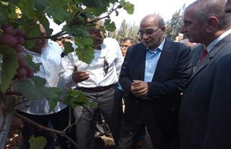 وزير الزراعة ومحافظ كفر الشيخ يشهدان يومًا حقليًا لمحصول الذرة بمحطة بحوث سخا | صور