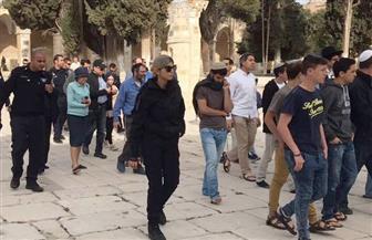 مستوطنون يقتحمون الأقصى بحراسة قوات الاحتلال الإسرائيلي