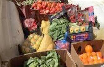 إعدام نصف طن خضراوات وفواكه غير صالحة في الدقهلية