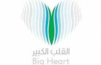 مؤسسة إماراتية تخصص مليوني دولار لتعزيز الرعاية الصحية في مصر