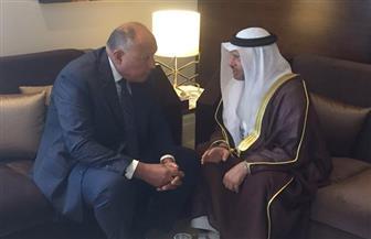 """شكري يلتقي وزير الدولة الإماراتي للشئون الخارجية علي هامش اجتماعات """"الوزاري العربي"""""""