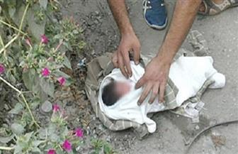 عامل يعثر على طفلة حديثة الولادة ملقاة بجوار منزله في السنبلاوين