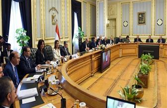 لجنة المنافذ الحدودية المصرية السودانية المشتركة توصي بتعظيم الاستفادة من المنافذ البرية بين البلدين