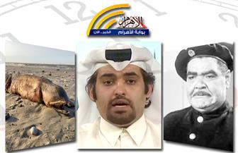 نظام قطر يترنح..أشهر شاويش..مخلوق غريب..فيروس غامض..مصادمات مع الشرطة بنشرة منتصف الليل