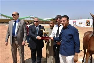 توزيع دروع التميز ومجسمات لحصان جامح للمتسابقين الفائزين في مسابقة مهرجان الخيول العربية