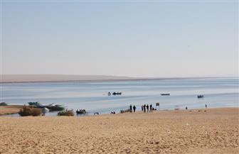 وزير البيئة يناقش استبعاد الساحل الجنوبي لبحيرة قارون من قانون المحميات الطبيعية