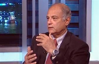هريدي: جهود مصر في المُصالحة الفلسطينية مهدت لاستئناف عملية السلام