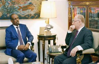 وزير الثقافة: كل الدعم الممكن لتأسيس معهد الفنون الشعبية بجيبوتي