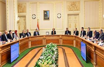 مجلس الوزراء يشيد بجهود القوات المسلحة والشرطة في الثأر لشهداء الواجب الوطني