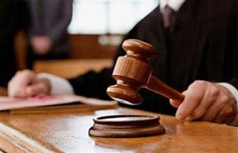 """تأجيل إعادة إجراءات محاكمة 18 متهمًا بـ""""أحداث أطفيح"""""""