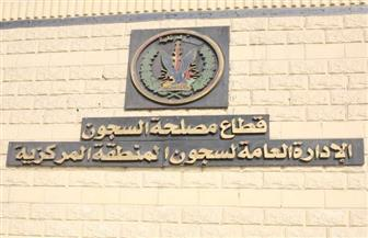الإفراج  الشرطي وبالعفو عن 487 من نزلاء السجون بمناسبة الاحتفال بعيدي الشرطة وثورة يناير