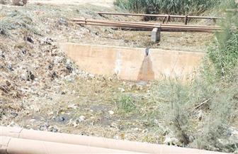 الرقابة الادارية: الهيش والحجارة والقمامة تسد مخرات السيول في السويس.. والتطهير يدويًا|صور