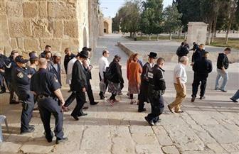 """مستوطنون بينهم وزراء إسرائيليون يقتحمون مغارة """"قصره"""" جنوب نابلس"""