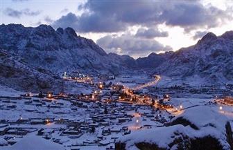 جمعية مستثمري جنوب سيناء ومرسى علم تعلن عن الفرص الاستثمارية بكاترين