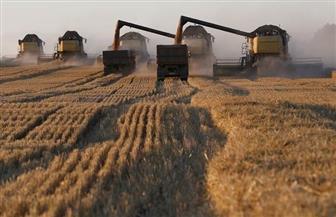 سوريا توقع عقدًا لشراء 3 ملايين طن من القمح مع روسيا