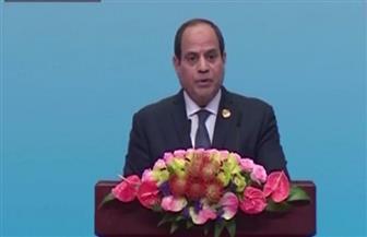 """السيسي: مصر ترى تجربة """"بريكس"""" جديرة بالمحاكاة ونقلها لدوائر أوسع"""